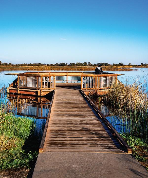 Lostslough Wetlands Webres