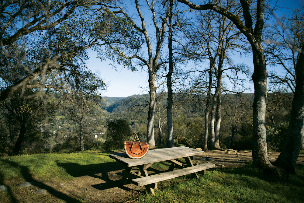 Picnic spot along the Monroe Ridge Trail in Marshall Gold Discovery Park near Coloma, California on March 23, 2021.