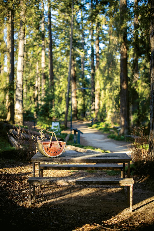 Picnic spot in the T. Elliot Weier Redwood Grove in the UC Davis Arboretum in Davis, California in March 23, 2021.